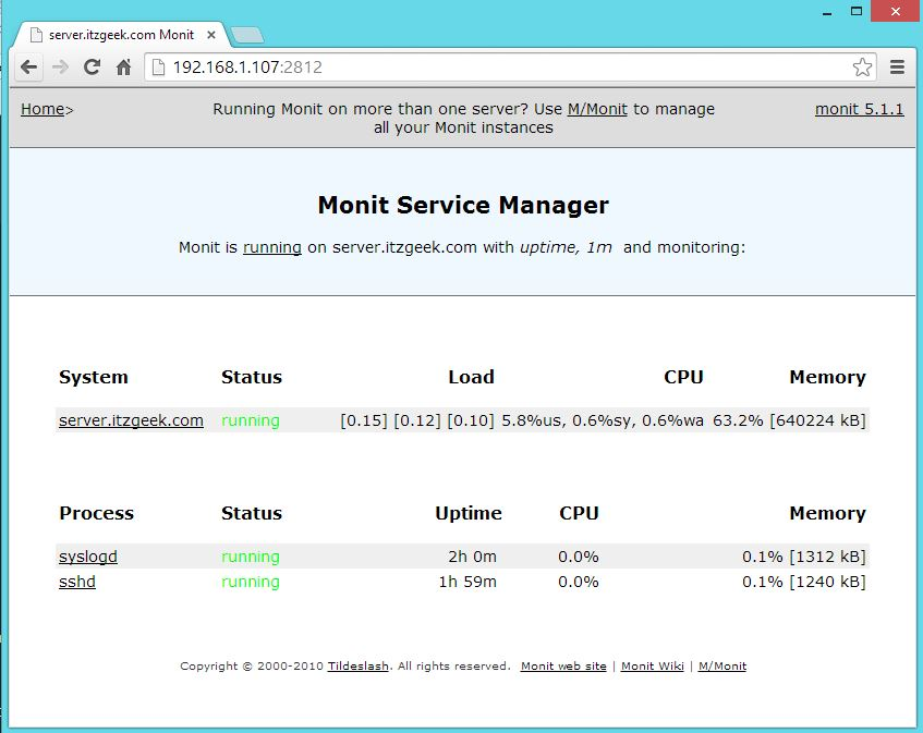 Monit With Configured Services