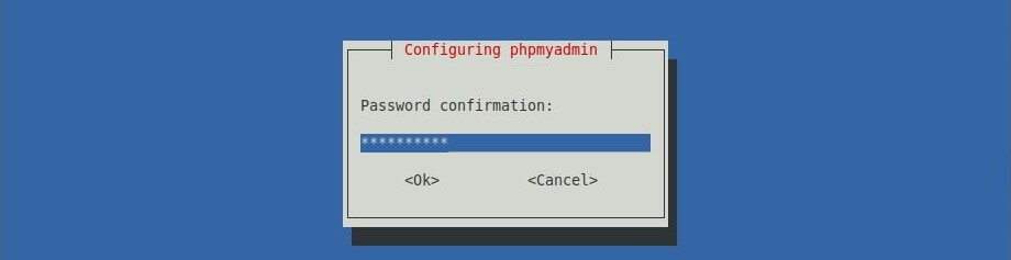 Install phpMyAdmin with Nginx on LinuxMint 19 - ReEnter Password
