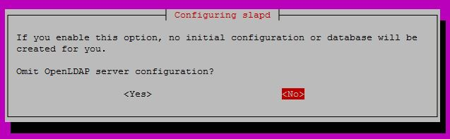 Configure OpenLDAP on Ubuntu 16.04 - Omit OpenLDAP server configuration