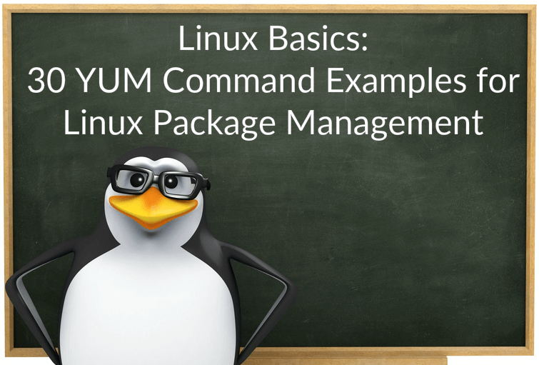 Linux Basics: 30 YUM Command Examples for Linux Package